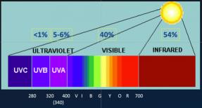 UVA and UVB Damage Chart - Susong Dermatology
